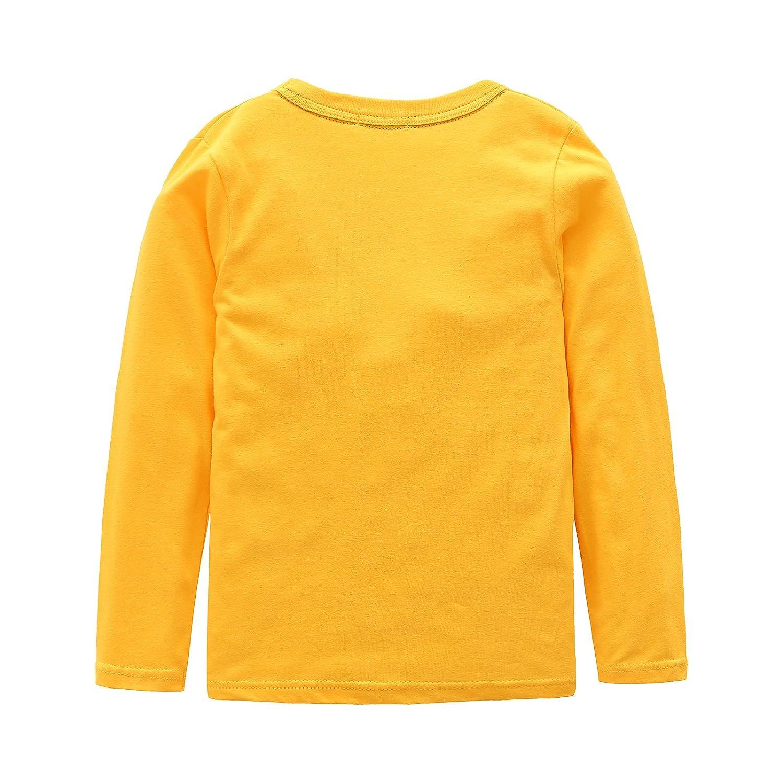 Amazon.com  Boys Cotton Long Sleeve T-Shirts T Rex Dinosaur Shirt Graphic  Tees  Clothing 36ab75b0c49