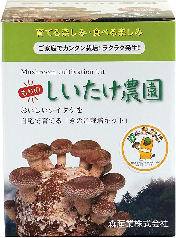 栽培 椎茸 しいたけ栽培(椎茸栽培の流れ、コマ菌の植え方、管理法、毒きのこなど)