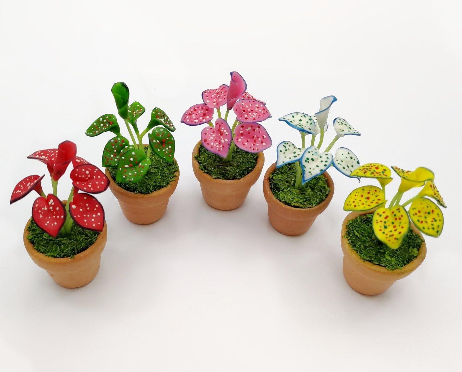 Red Leaved Caladium Flower Miniature Handmade Clay Plant Dollhouse Accessory