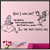 Alice In Wonderland Quotes Wall Decal Sticker D52