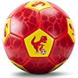 CubicFun Soccer Ball Size 3 for Kids with Hand Pump Mesh Bag, Dinosaur Ball Toys for Kids 3-5, Sports Outdoor Toys for…