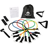 WenTop Resistance Band Set Detachable Heavy Duty Resistance Bands Workout Bands with Door Anchor, Ankle Strap, Exercise Chart, and Resistance Band Carrying Case for Fitness and Exercise