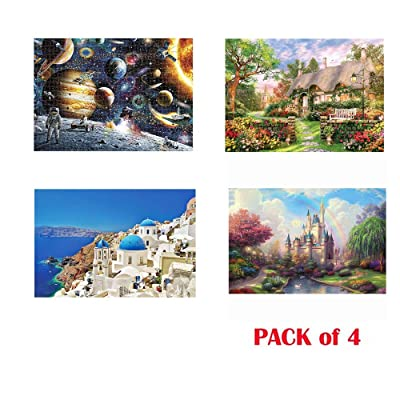Jigsaw Puzzles Pack of 4 - Each 1000PCs, Chanyuhui Puzzle for Adults Kids 1000 PCS Jigsaw Puzzles Educational Intellectual Decompressing Fun Family Game Educational Fun Game for Kids Adults: Toys & Games