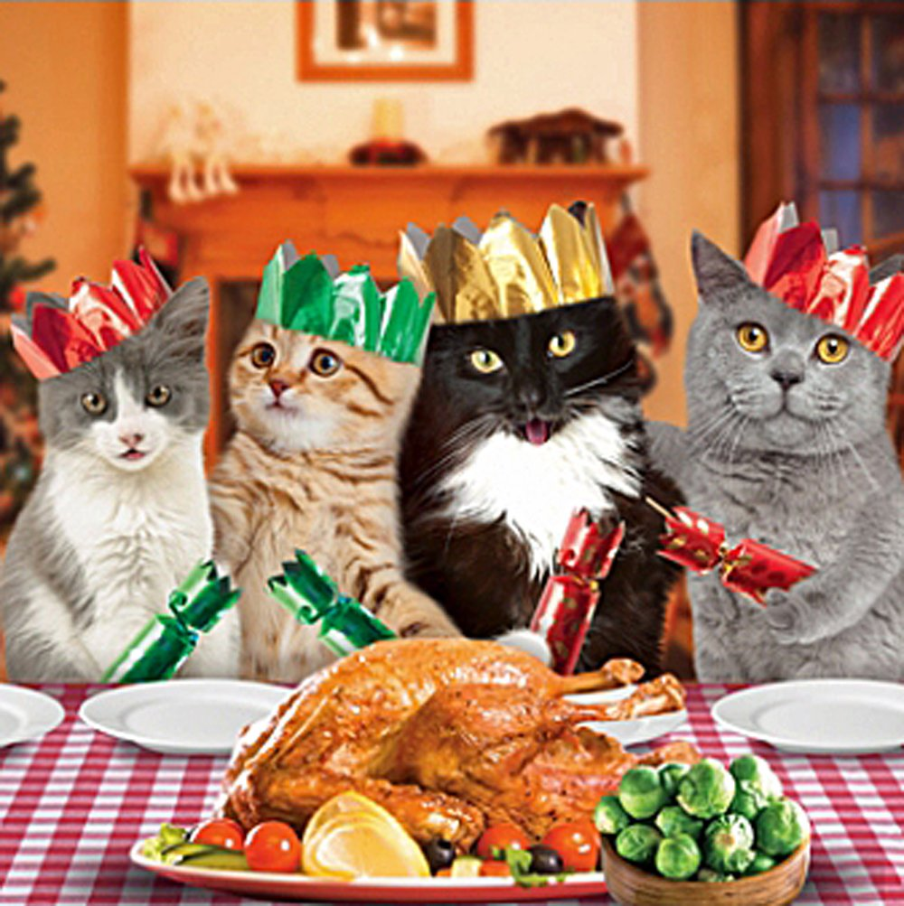 Cats Christmas Dinner Single Christmas Card