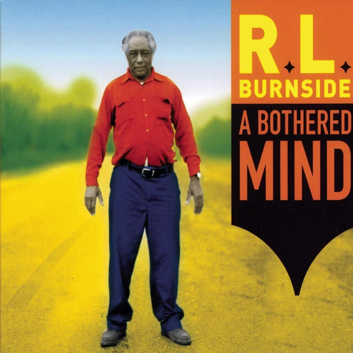 A Bothered Mind by Burnside, R.L.
