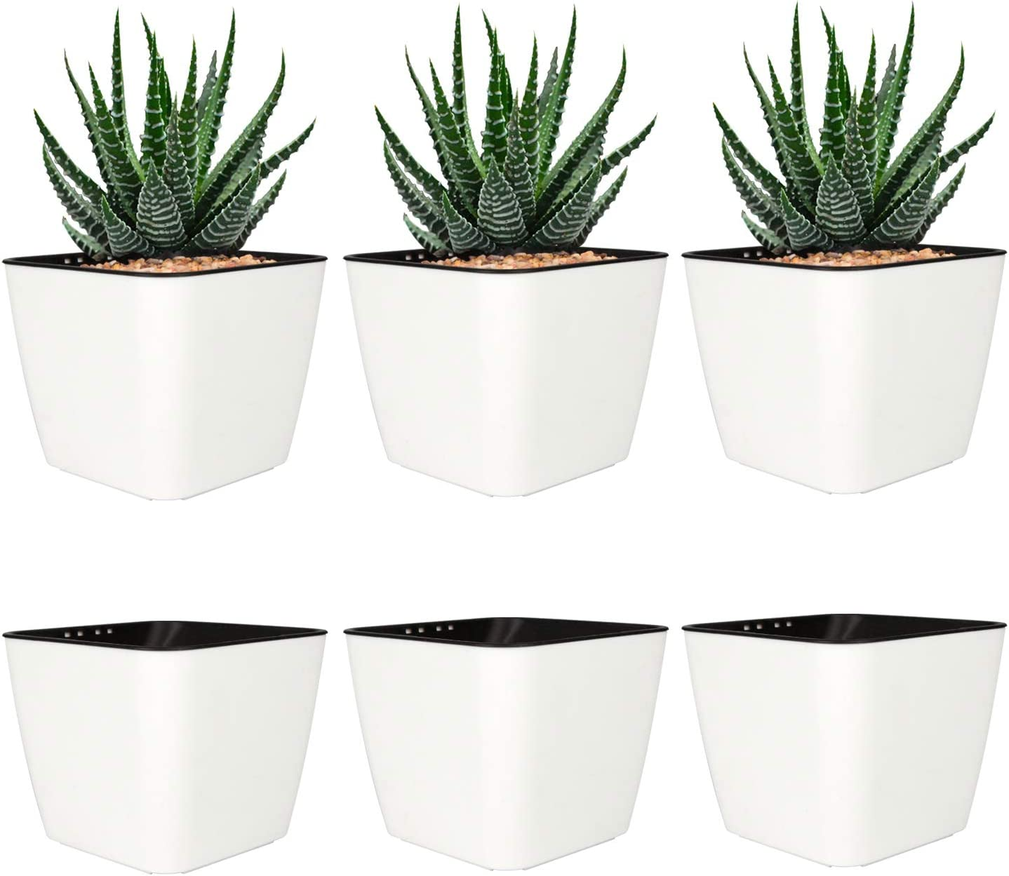 T4U 4 Inch Self Watering Plastic Planter with Liner Pack of 6 - Matte White, Modern Decorative Small Planter Pot for House Plants, Aloe, Herbs, African Violets, Succulents and More