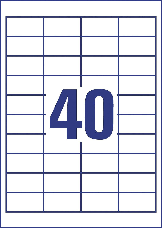 colore bianco Prodye Etichette 100 fogli 3x8//foglio mattate autoadesive 70 x 37.1 mm