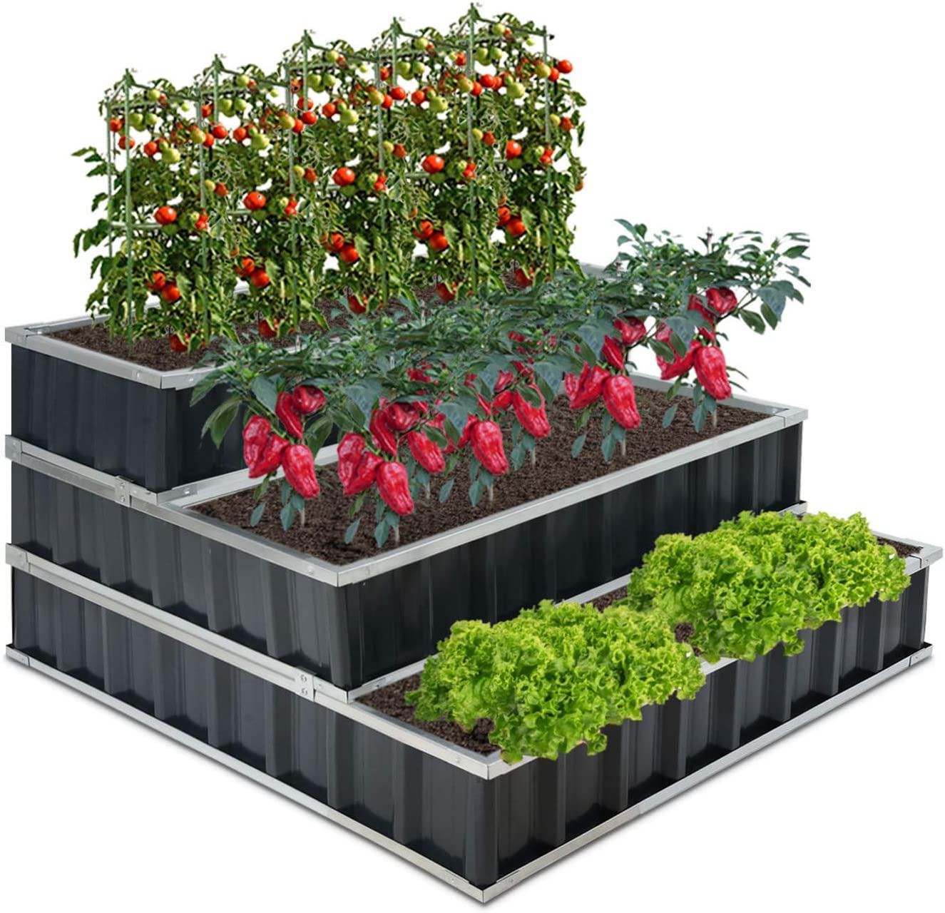 GROWNEER 3 Tier 4 x 4 x 2 Feet Dark Gray Metal Raised Garden Bed with 1 Pair of Gloves and 15 Pcs Plant Labels, Elevated Planter Box for Vegetables, Fruits, Flowers, Herbs
