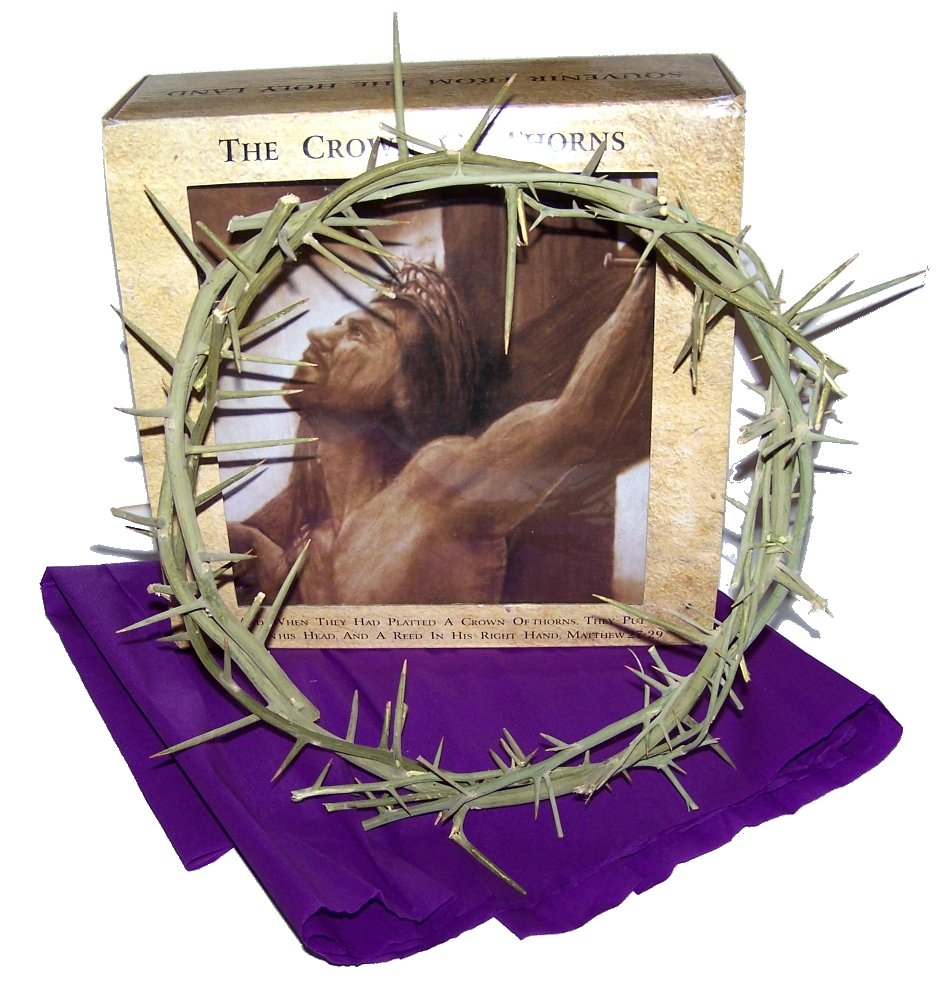 Amazoncom Crown of Thorns Authentic Crown of Thorns From the