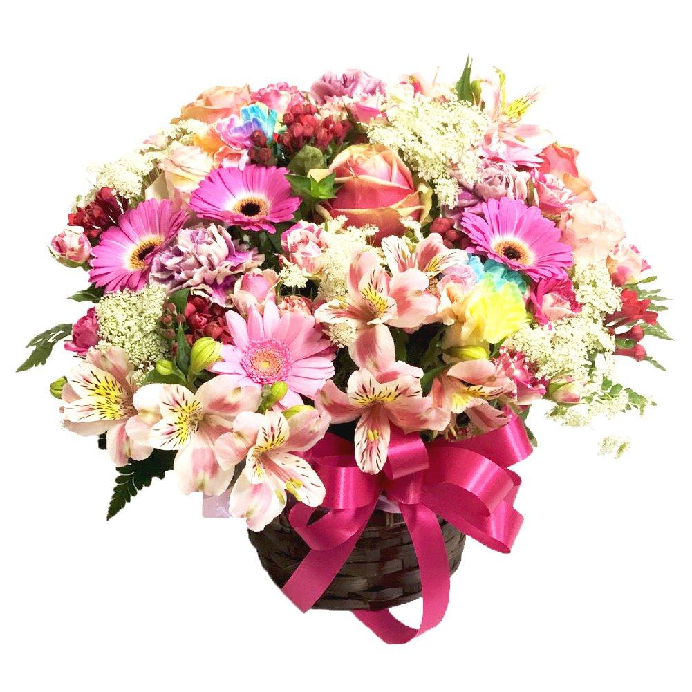 バラ風呂ギフト 約65輪~80輪 ローズバス 薔薇風呂 ばら風呂 フラワーシャワー フラワーバス サプライズ バレンタイン for bath with roses petals バレンタイン B01CQI97K2