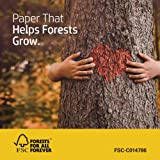HP Printer Paper All-In-One 22lb, 8.5 x 11, 1 Ream, 500 Sheets, Made in USA From Forest Stewardship Council (FSC) Certified Resources, 96 Bright, Acid Free, Engineered For HP Compatibility, 207010R