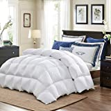 XCW 5% Bamboo Fiber Blend Comforter,Ultra Soft Brushed Microfiber, Quilt with Corner Tab for All Season Hypoallergenic…