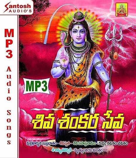 Buy Shiva Shankara Seva Telugu Devotional MP3 Audio Songs