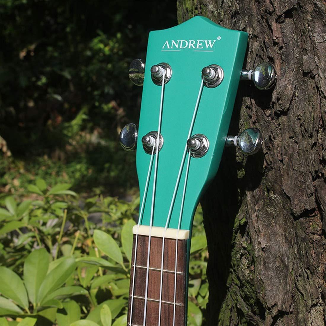 Olprkgdg Andrew21 Ukelele sandía de Dibujos Animados Pulgadas para Principiantes Hawaii pequeña Guitarra de Cuatro Cuerdas: Amazon.es: Hogar