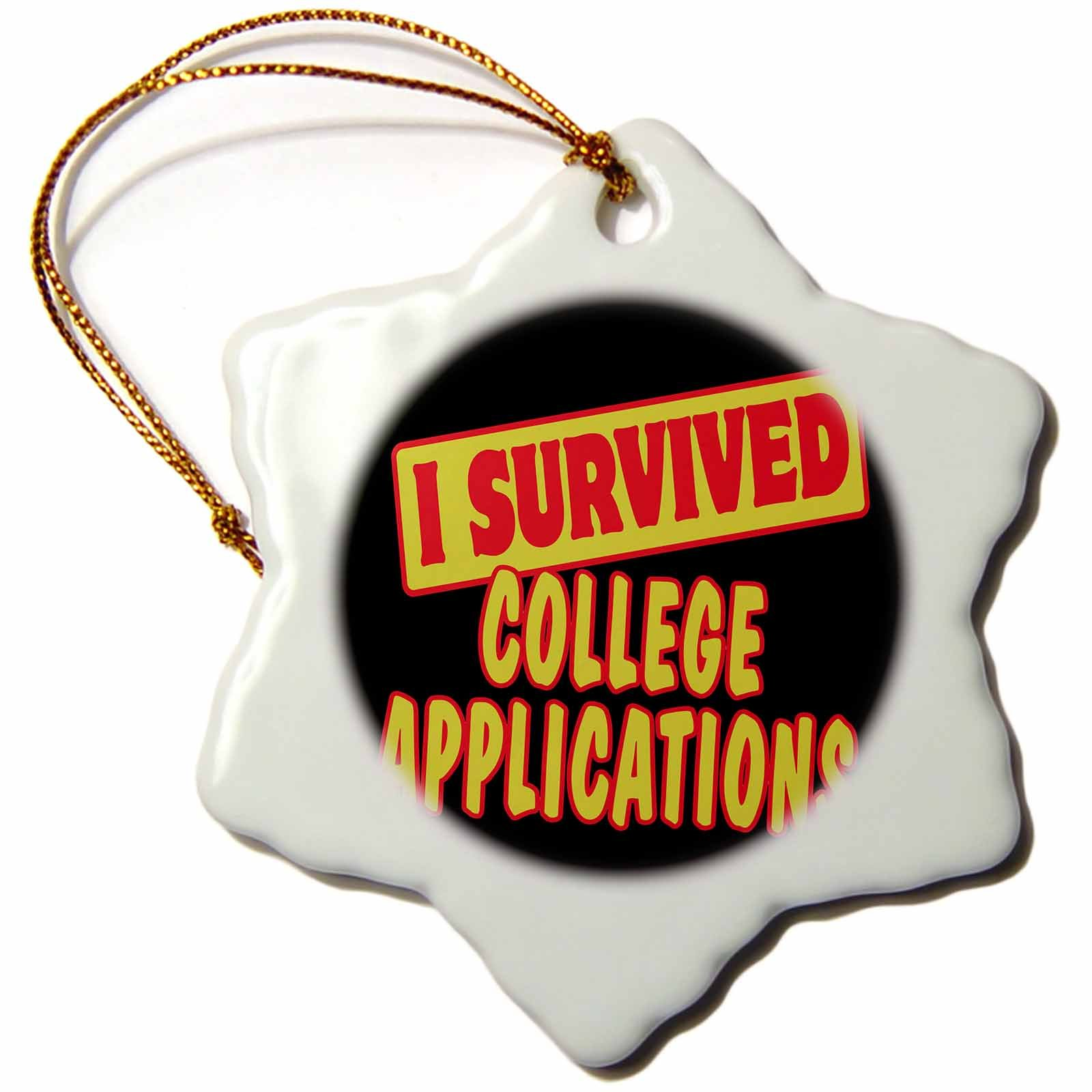 3dRose orn_117845_1 I Survived College Applications Survial Pride and Humor Design Snowflake Ornament, Porcelain, 3-Inch