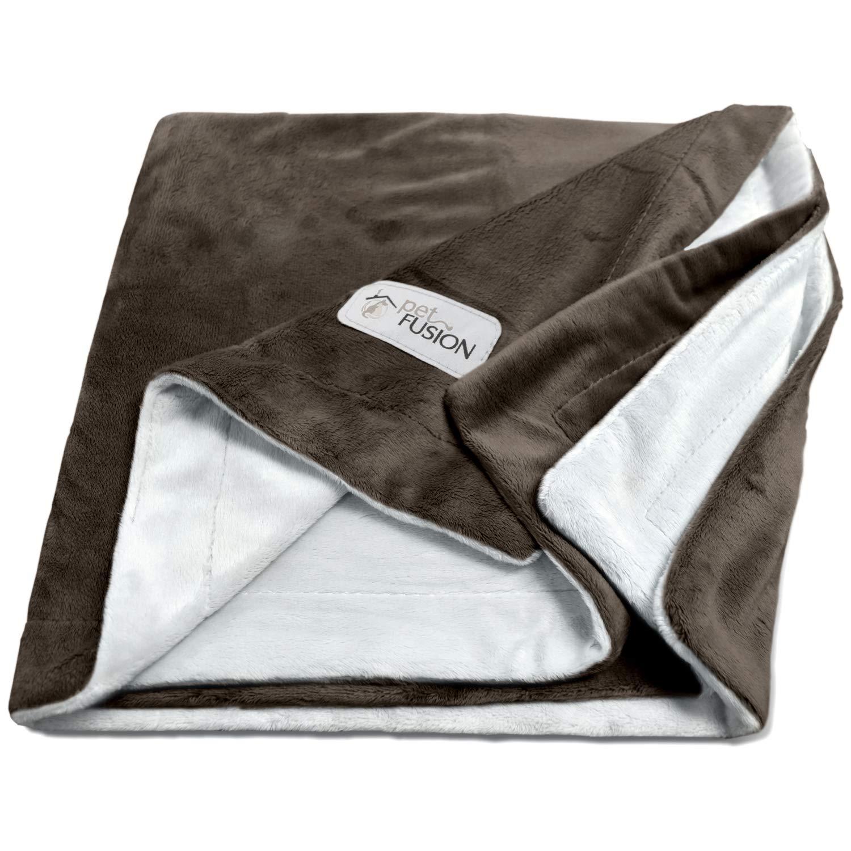 PetFusion [NEW] Premium Pet Blanket. Reversible Gray Micro Plush. [100% soft polyester] (Medium (44 x 34), Chocolate)