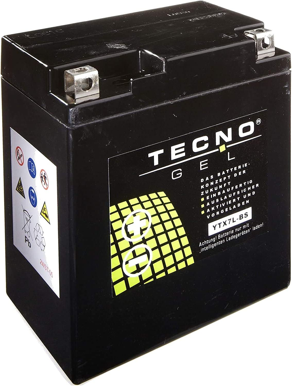 YTX7L-BS Tecno Batterie au Gel pour CB 600 F Hornet Ann/ée 1998-2001