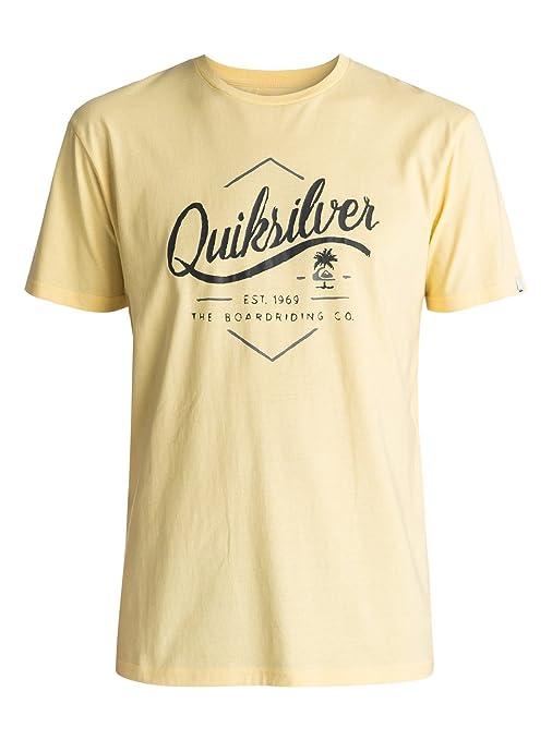 Quiksilver - Camiseta - Hombre - M  Amazon.es  Ropa y accesorios 9a0ae560809