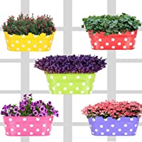 Bison International Polka Dotted Oval Railing Planters Balcony Garden; Multicolour - Pack of 5