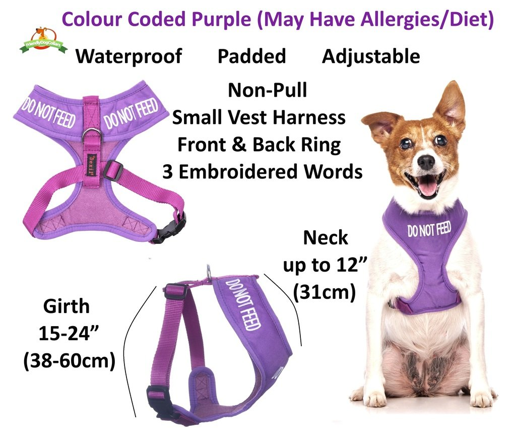 Dexil Limited Do Not Feed Morado Color Coded pequeño Chaleco arnés ...
