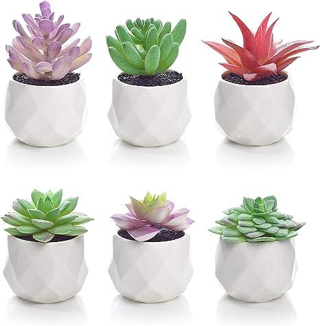 Lvydec 6 Pack Artificial Succulent Plants Mini Sized Fake Succulent Plants In Pots For Home Bath Office Shelf Decoration Porcelain Pots Amazon Co Uk Kitchen Home