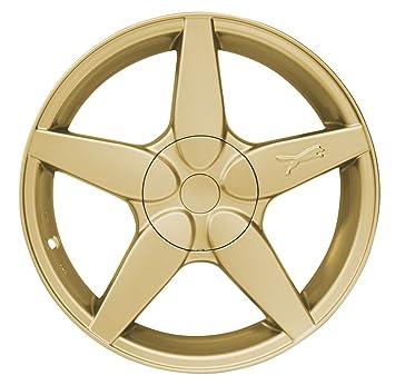 Raid Hp 380009 Automotive Spruhfolie 500 Ml Gold Metallic
