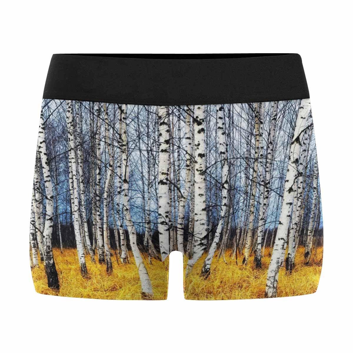 XS-3XL INTERESTPRINT Boxer Briefs Mens Underwear Autumn Birch Grove Among Orange Grass