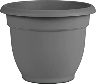 "product image for Bloem AP08908 Ariana Self Watering Planter 8"", Charcoal Gray"