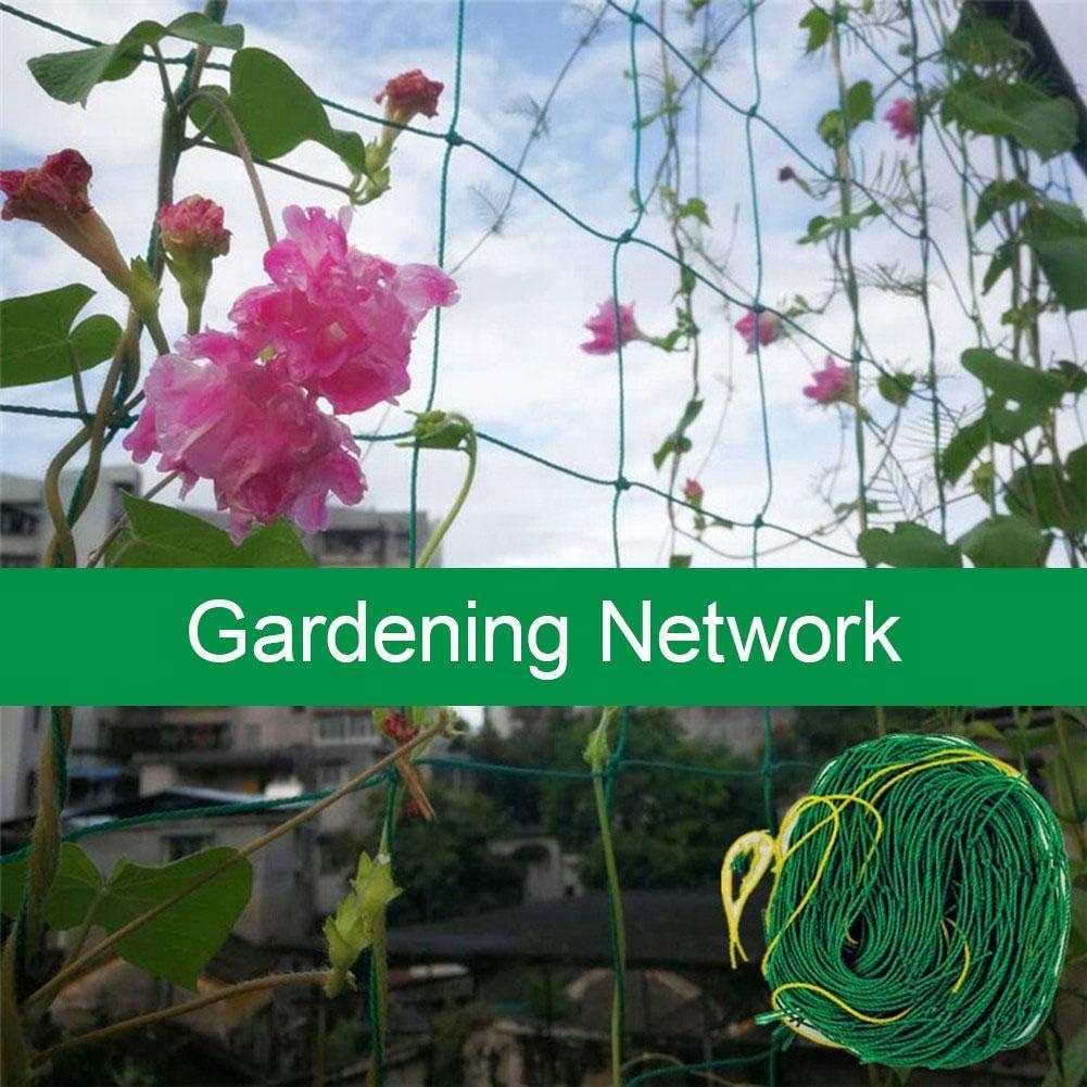 Class.Z Ranknetz Rankhilfe Pflanzennetz St/ütznetz Gartennetz F/ür Kletterpflanzen Pflanzen-Kletternetz-Garten-Gitter-Netz F/ür Gartenarbeit-Rebe-Frucht-Blumen Well-Designed