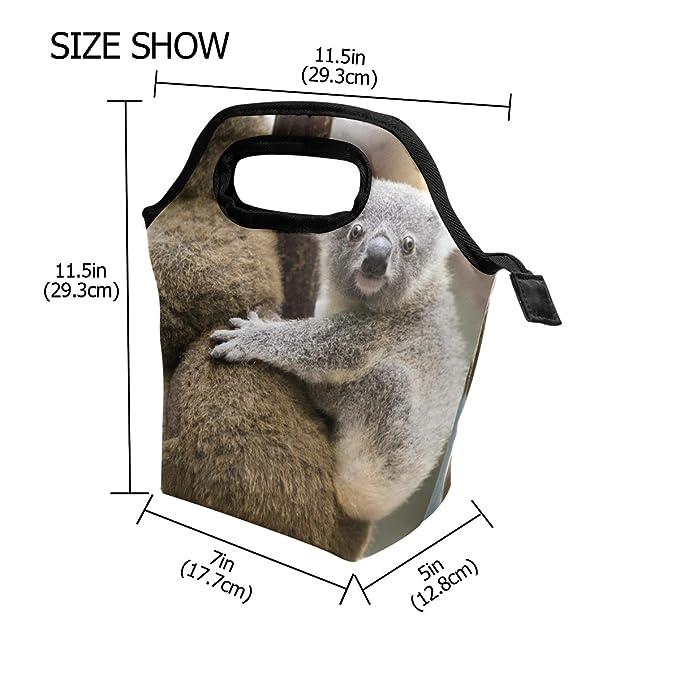 467b76dd9d83 Amazon.com - HEOEH Australian Animal Koala Lunch Bag Cooler Tote Bag ...