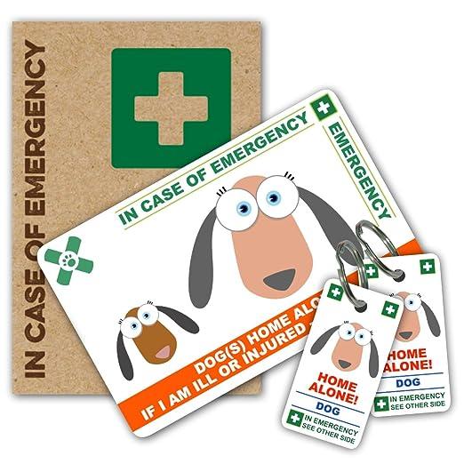 Perro solo en casa - en caso de emergencia (I.C.E.) tarjeta con ...