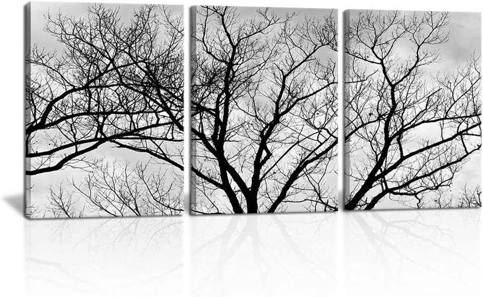 """3 Piece Black and White Canvas Wall Art Tree Plant Pictures Winter Forest Landscape Photo Paintings Countryside Nature Scenery Print for Bathroom Bedroom Home Decor 12"""" x 16"""" x 3 Panels"""