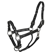 Perri's Leather Horse Twisted Leather Halter
