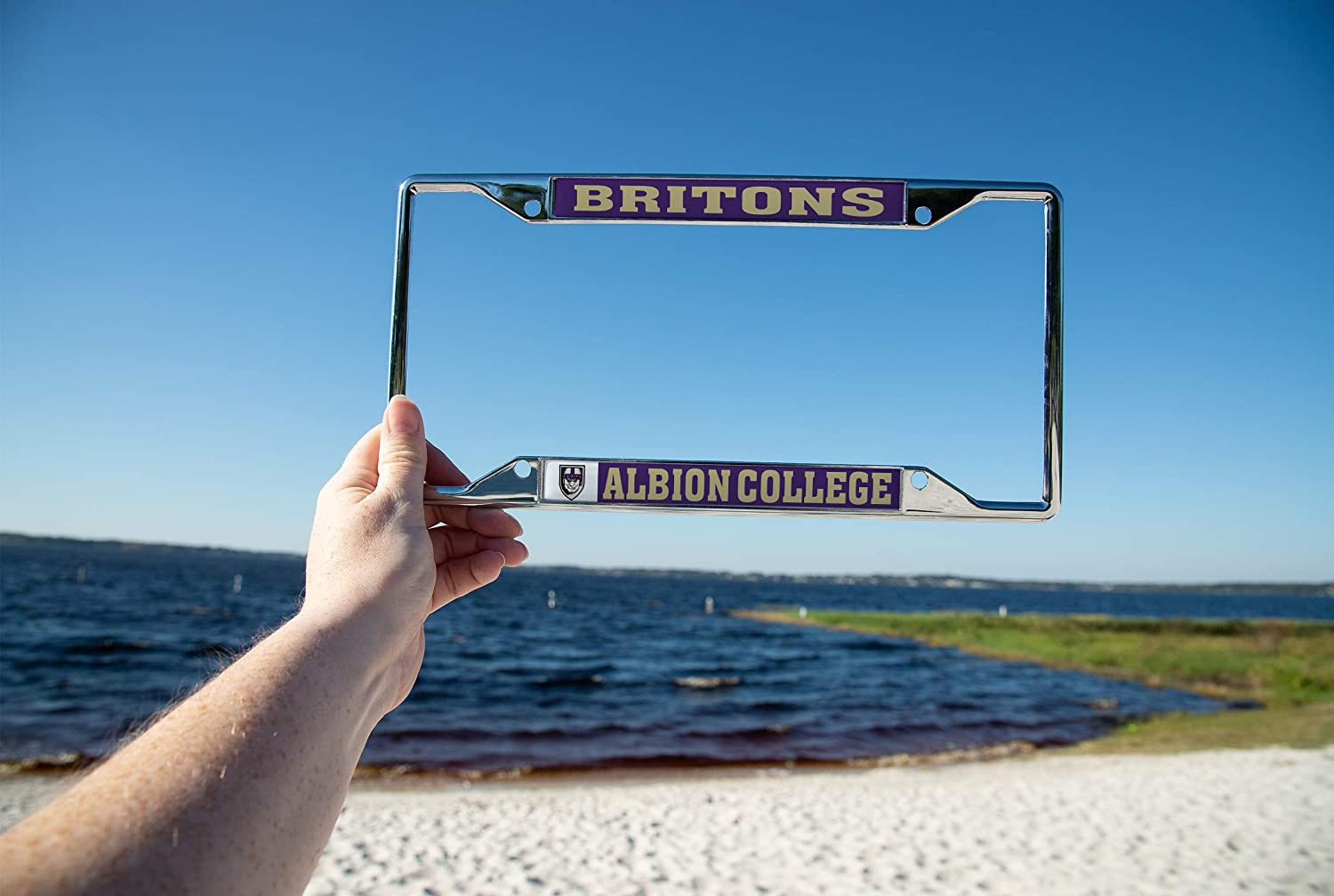 Mascot Desert Cactus Albion College Britons NCAA Metal License Plate Frame for Front or Back of Car Officially Licensed