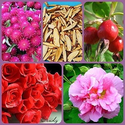 Sierra té tez RX: pétalos de rosa, Rose Hips, Amaranth ...
