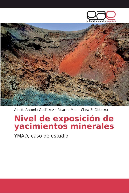 Nivel de exposición de yacimientos minerales: Amazon.es: Gutiérrez, Adolfo Antonio, Mon, Ricardo, Cisterna, Clara E.: Libros
