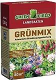 Greenfield 63705 grünmix, 500 g