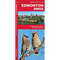 Edmonton Birds: A Folding Pocket Guide to Familiar Species
