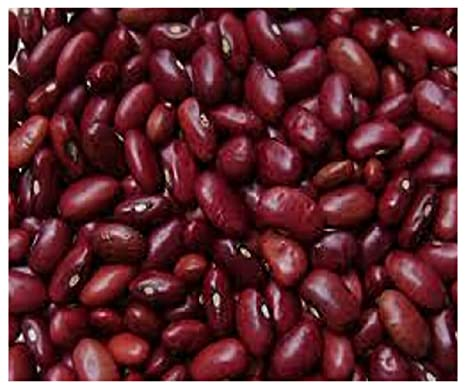 Lobia / Kidney (Bean / Lentil / pulses / Black Eye Beans