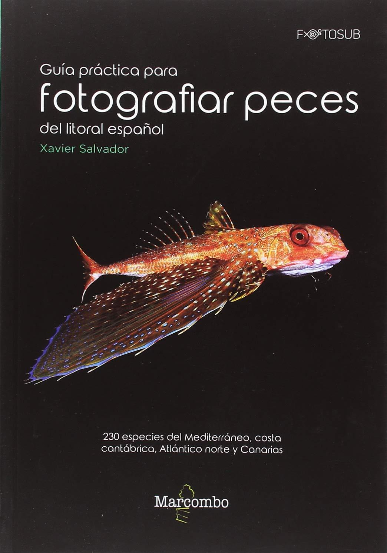 Guía práctica para fotografías peces del litoral español: 230 ...