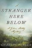 A Stranger Here Below: A Gideon Stoltz Mystery (Gideon Stoltz Mystery Series)