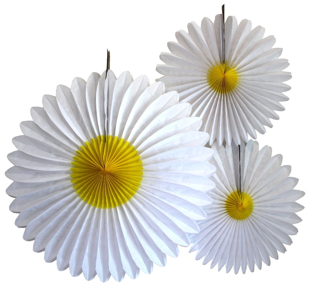 Amazon Blue Daisies Flower Straws 25 Pack Summer Daisy