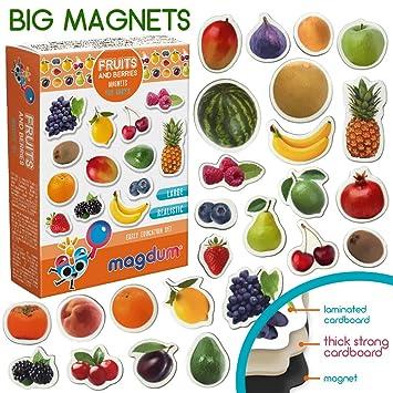 MAGDUM Frutas&Bayas Imanes Foto Real de Pizarra Infantil para ...