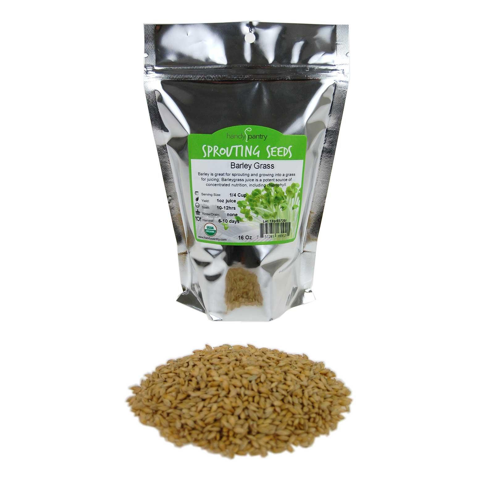 Organic Barley Seeds - 1 Lbs - Whole (Hull Intact) Barleygrass Seed - Ornamental Barley Grass, Juicing - Grain for Beer Making, Emergency Food Storage & More