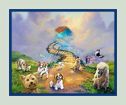 amazon com rainbow bridge all dogs go to heaven v 3 11x14 matted