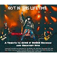 Not In This Lifetime: A Tribute To Guns N Roses' Reunion & Greatest Hits [Explicit]