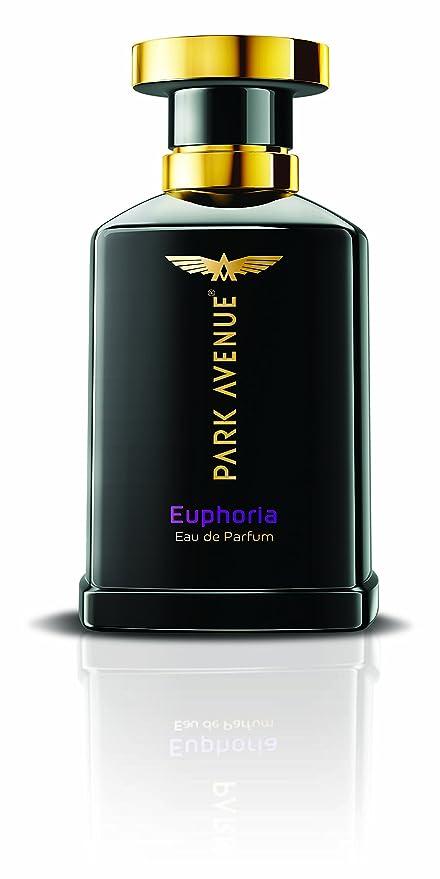 Buy Park Avenue Euphoria Eau De Parfum For Men 100ml Online At Low