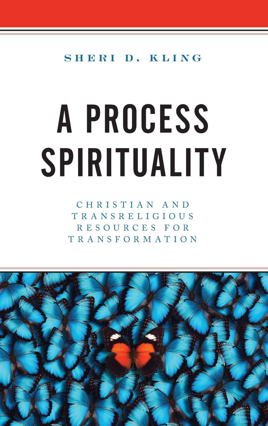 Amazon.com: A Process Spirituality: Christian and Transreligious ...