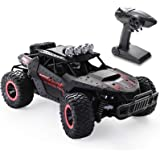 RC Car 1:16 Scale Remote Control Car Off-Road RC Trucks 2.4 GHz with 2 Rechargeable Batteries,Electric Toy Car for All Adults