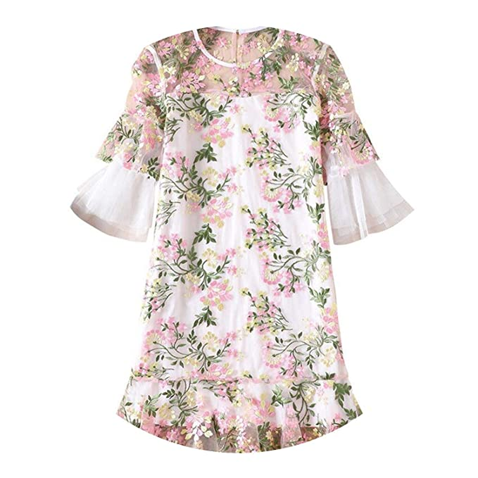 8c86a2c3 better-caress-Vintage Women Clothing Velvet Dress Summer Designer Runway  2018 Gauze Embroidered Ropa Mujer Talla Grande N9219 at Amazon Women's  Clothing ...